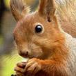 Аватар для Сережечка Жарин